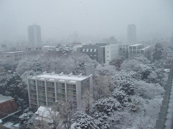 センター試験と雪