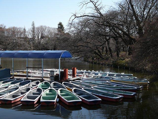 井の頭公園のボート