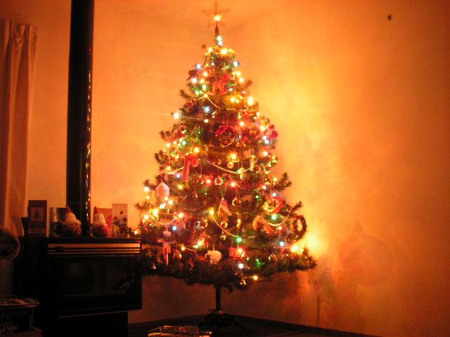 クリスマスの強盗犯